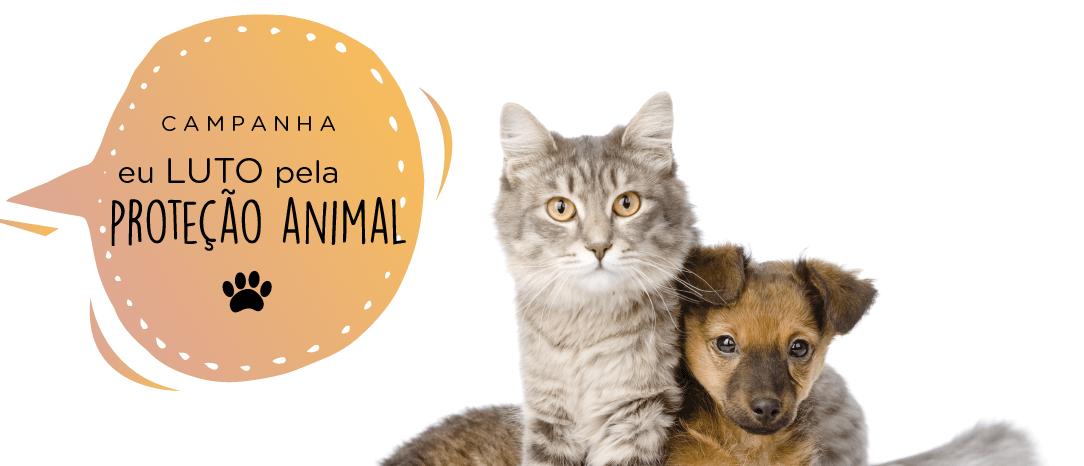 """Luto Curitiba realiza a campanha """"Eu Luto Pela Proteção Animal!"""""""